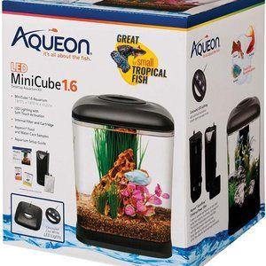 NEW Aqueon Beta Aquarium Kit 1.6 Gal w/ Filter